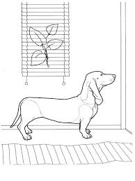 Dachshund Coloring Pages Best Dachshund Coloring Pages Images On