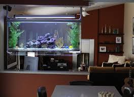 aquarium furniture design. Aquarium Installation Type: Saltwater Reef Size: 55 Gallon (48\ Furniture Design