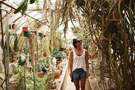 moorten botanical garden 1 teva collect live better stories field notes palm
