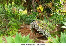 topiary san go botanic garden encinitas california stock photo