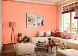 carrot punch house paint colour shades