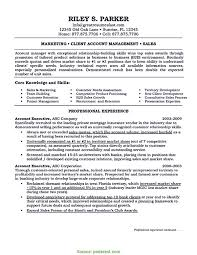 Top Sample Resume Format For Accounts Executive Account Executive