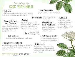 Herbs Are Tasty Introduction To Herbs For Kids