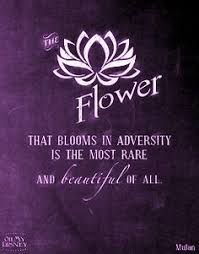 Purple Flower Quotes 384 Best Purple Quotes Images Purple Colors Shades Of Purple Colors