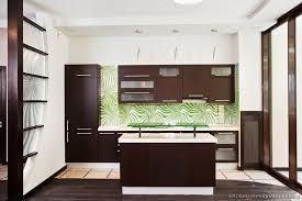dark wood modern kitchen cabinets. Modern Dark Wood Kitchen Cabinets A