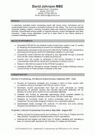 Certified Professional Resume Writers Charismatic Professional Resume Writers Government Jobs Tags 95