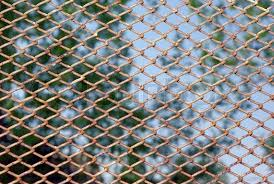 Chain link rusty fence on a green foliage background Stock Photo