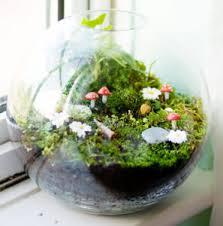 fairy garden terrarium. Exellent Garden Submit A Comment Cancel Reply Inside Fairy Garden Terrarium O