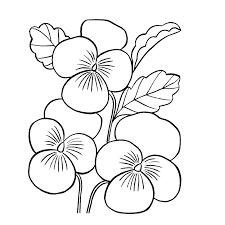 Bloemen Kleurplaten Kleurplatenpaginanl Boordevol Coole