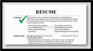 How to Write a Resume Summary | LiveCareer  Resume