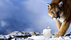winter mac backgrounds mac winter leopard wallpaper 2560 x 1440 high definition