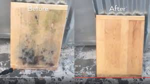 Black Mold In Kitchen How Do You Get Rid Of Black Mold