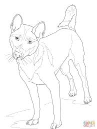 Small Picture New Guinea Singing Dog coloring page Free Printable Coloring Pages