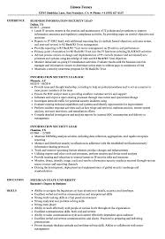 Information Security Resume Sample Information Security Lead Resume Samples Velvet Jobs 5