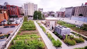 Urban Farming Design Food Roof Farm By Urban Harvest Stl Project Of The Week 3 19 18