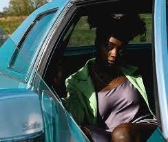 Akilah Townsend Female Photographer Profile - Chicago, Illinois, US - 5  Photos | Model Mayhem
