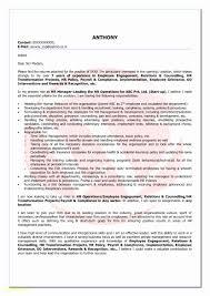 Mla Format For College Essay Unique Research Paper Outline Format