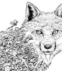 60 Mandala Da Colorare E Stampare Di Animali Con Disegni