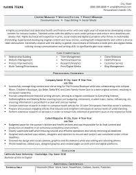 Professional Experience Resume Example Marketing Resume Sample ...