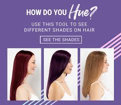 Age Beautiful Permanent Color Chart Shade Chart Zotosprofessional Com