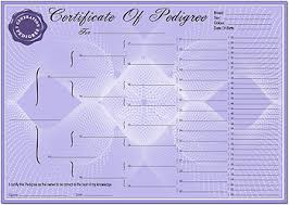 Blank Pedigree Form Jasonkellyphoto Co