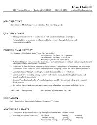 Chronological Resume Example Marketing Sales