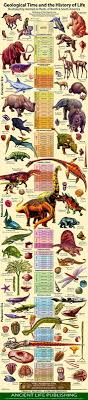Dinosaur Time Periods Chart Geological Timeline Poster Evolution Of Earth Science