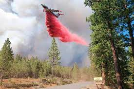 Northern California Tamarack Fire ...