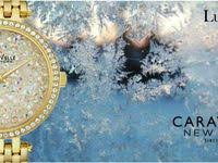 8 Best <b>Caravelle New York</b> images | New york, Jewels, Bulova