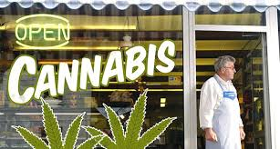 pros of marijuana legalization in colorado
