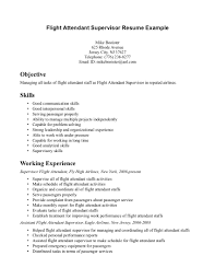 Cool Resume Format For Flight Attendant Free Career Resume Template