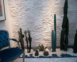 beautiful indoor landscaping of cactuses