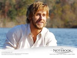 the notebook the notebook movie review rachel mcadams stars as sheltered southern belle allie hamilton allie pays a to seabrook north carolina to see her family and while there