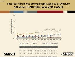 What Is The Scope Of Heroin Use In The United States