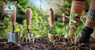 basic gardening. Simple Basic Basic Gardening Will Soon Be Taught To All Elementary Students And C