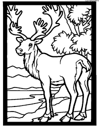 Small Picture Slection de coloriage caribou imprimer sur LaGuerchecom Page 2