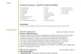 Entry Level Web Developer Resume Examples Computer Programmer