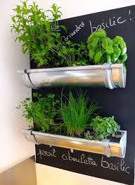 Small Picture How To Make An Indoor Herb Garden Gardening Ideas