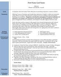 Public Accounting Resume Description