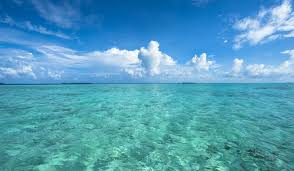 which ocean is the cleanest