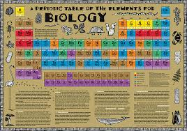Biology Chart Biology Periodic Table Poster