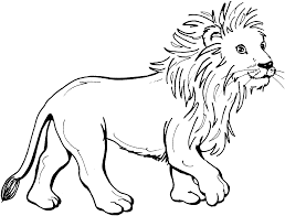 mountain lion clipart colouring page 2