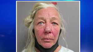 Maine woman accused of hitting officer with car, leading police on  high-speed chase | WPFO