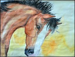 paintings for horse head canvas painting