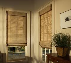 Types Of Window Blinds Home Decor Blinds Amusing Brown Shutters Window Curtains And Window