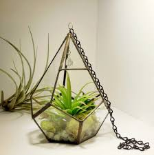 rustic geometrical teardrop shape hanging terrarium container with chain
