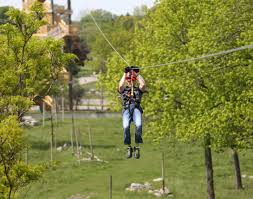toledo zoo gives first look at new zipline course the blade