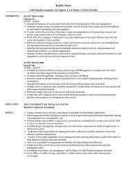 Manager Resume Pdf Audit Manager Resume Samples Velvet Jobs 16