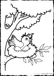Small Picture Baby Bird Coloring Pages Miakenasnet