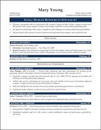 Resume Template Human Resources Executive Resource Sample Pdf Hr